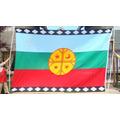 Bandera Mapuche Gigante  / Bordada / No Es Estampada.