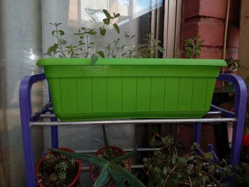 jardineras de colores
