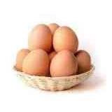 Huevos Fértiles De Gallinas Hamburguesas