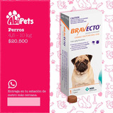 Bravecto 4.5-10 Kg Envío Gratuito Abipets!