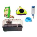 Kit N°3 Para Cuy, Conejo, Chinchilla,