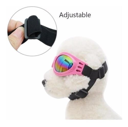 Gafas Perros Proteccion Uv Envio Gratis