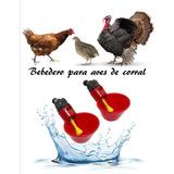 Bebedero Copa Aves, Gallina, Codorniz, Pato, Conejo, Bunny