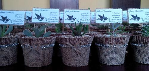 Recuerdos De Bautizo Con Cactus.Cactus Y Suculentas Para Recuerdos Precio Por Mayor