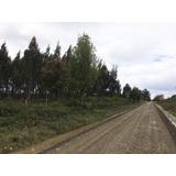 Parcelas En Chiloe
