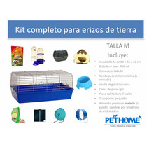Kit Completo Talla M Para Erizos De Tierra Pethome Chile