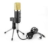 Microfono Condensador Usb Profesional Grabacion Bm100fm
