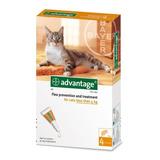 Pipeta Antiparasitaria Gatos Advantage Hasta 4 Kg Pethome