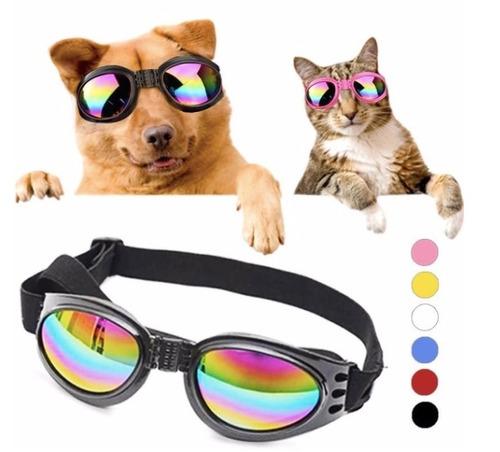 5 Gafas Perros Proteccion Uv Envio Gratis