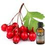 Aceite De Rosa Mosqueta 1 Litro