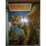 Album Animales Completo