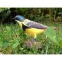 Aves De Madera 7 Colores