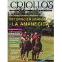 Criollos, Rodeo Chileno, La Revista De Los Corraleros, Nº 22