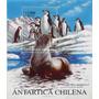 Antartica Chilena - 1999 Mint Block Souvenir
