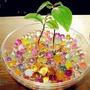 1000 Bolas De Biogel Mix 10 Colores Decoración De Floreros