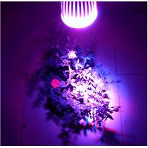 Led Cultivo Indoor Grow 10w E27 Rojo Azul