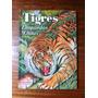 Tigres Leopardos Chitas Ilustrado Material Antiguo Año 1962