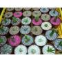 Cactus Y Suculentas ,