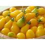 Semillas De Tomate Pera Amarillo, Excelente Germinación
