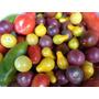 Tomates Pack Semillas De 12 Variedades Distintas + Guia