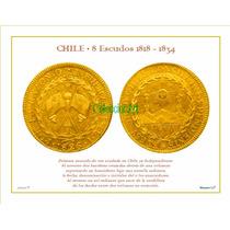 Lámina 19- 8 Esc 1826 Oro Banderas Dl Album Monedas De Chile