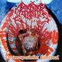 Kabak - Descomposicion Cerebral (cannibal Corpse)