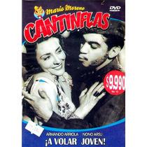 Dvd Original : Cantinflas A Volar Joven - Armando Arriola No