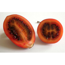 Semillas Orgánicas De Tomate De Árbol, Envío Gratis