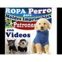 Imprimible Confeccion Ropa Canina Incluye Video