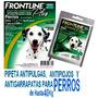 5 Pipetas Anti Pulga Piojo Frontline Plus Perro Hasta 40 Kg | ANIMEANTOF